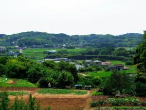 三原城跡から見た景色
